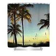 Bright Sunshine Greets The Palms Shower Curtain