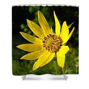 Bright Yellow Flower Shower Curtain