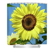 Bright Yellow Sunflower Art Prints Blue Sky Baslee Troutman Shower Curtain