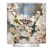 Brightness Shower Curtain