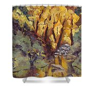 Brilliance At Service Creek Steamboat Springs Colorado Shower Curtain