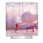 Brilliant Beauty Cortez Beach Shower Curtain