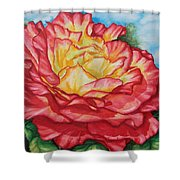 Brilliant Bloom Shower Curtain