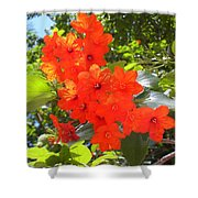 Brilliant Blossoms Shower Curtain