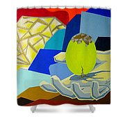 Brilliant Creation Shower Curtain
