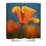 Brilliant Poppy Shower Curtain