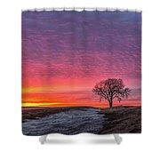 Brilliant Skies Shower Curtain