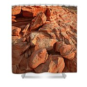 Brilliantly Colored Sandstone At Sunrise In Valley Of Fire Shower Curtain