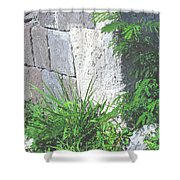 Brimstone Wall Shower Curtain