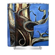 Bristlecone Tree No. 2 Shower Curtain