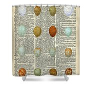 British Birds Eggs Shower Curtain