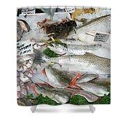 British Fish Market Shower Curtain