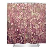 Briza Media Limouzi Decorative Quaking Grass Shower Curtain