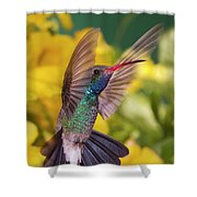 Broad-bill Pose Shower Curtain