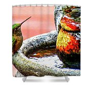 Broad-tailed Hummingbird At Water Fountain Shower Curtain