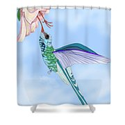 Broadbilled Hummer Shower Curtain