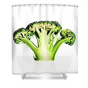 Broccoli Cutaway On White Shower Curtain