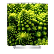 Broccoli Shower Curtain