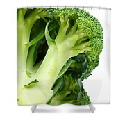 Broccoli Shower Curtain by Gaspar Avila