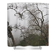 Broken Heart In  Fog Shower Curtain