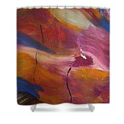 Broken Heart Shower Curtain