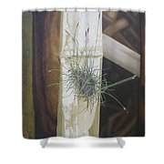 Bromeliad And Bamboo Shower Curtain