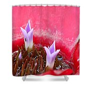 Bromeliad With Ant Shower Curtain