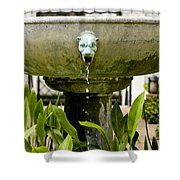 Bronze Civit Head Fountain Shower Curtain