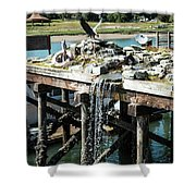 Bronze Eagle And Water Fall Shower Curtain
