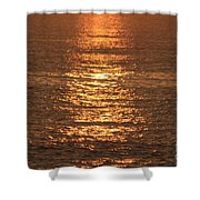 Bronze Reflections Shower Curtain