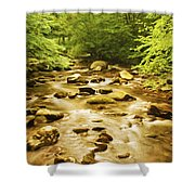 Bronze Stream Shower Curtain