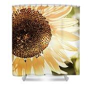 Bronze Sunflower Shower Curtain