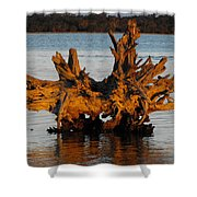 Bronzed Wood Shower Curtain