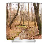 Brook In The Woods Shower Curtain