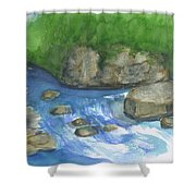 Brook And Stream  Shower Curtain