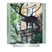 Brooklyn Building And Tree Shower Curtain