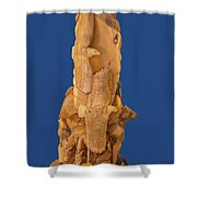 Brother, Carved Out Of A Dead Tree By Scott Alan Malinsky In Twin Lakes, Colorado   Shower Curtain