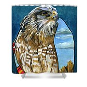 Brother Hawk Shower Curtain