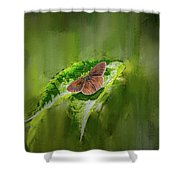 Brown Butterfly #h6 Shower Curtain by Leif Sohlman