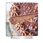 Brown Chocolate Cake Shower Curtain