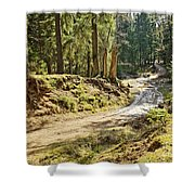 Brown Dirty Road Under Spring Sun Rays Shower Curtain