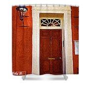 Brown Door Shower Curtain