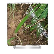 Brown Dragon Shower Curtain
