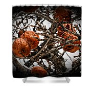 Brown Fruit Abstract Shower Curtain