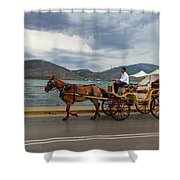 Brown Horse Drawn Carriage Shower Curtain