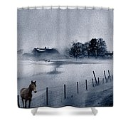 Brown Horse On A Blue Farm Shower Curtain