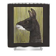 Brown Llama Profile Cathy Peek Farm Animal Art Shower Curtain