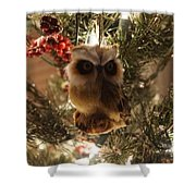 Brown Owl Shower Curtain