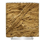 Brown Paper Towel Shower Curtain