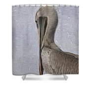 Brown Pelican In Paint Shower Curtain